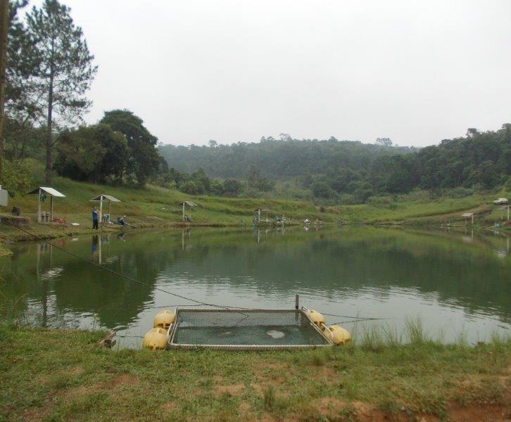 Consultoria de licenciamento ambiental